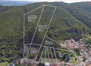 Leilão de terrenos em Minas Gerais: onde encontrar e como participar?